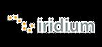 8_logo_iridium_l